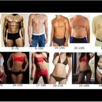 腹筋を割る体脂肪率